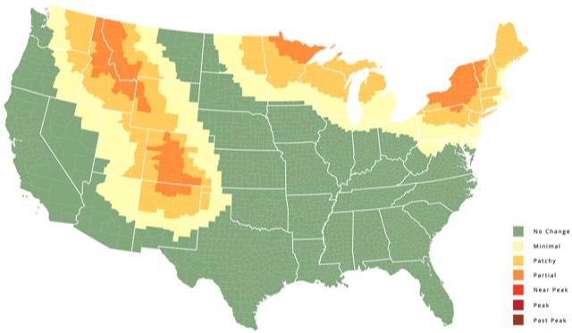 Fall Foliage Map - Us foliage map