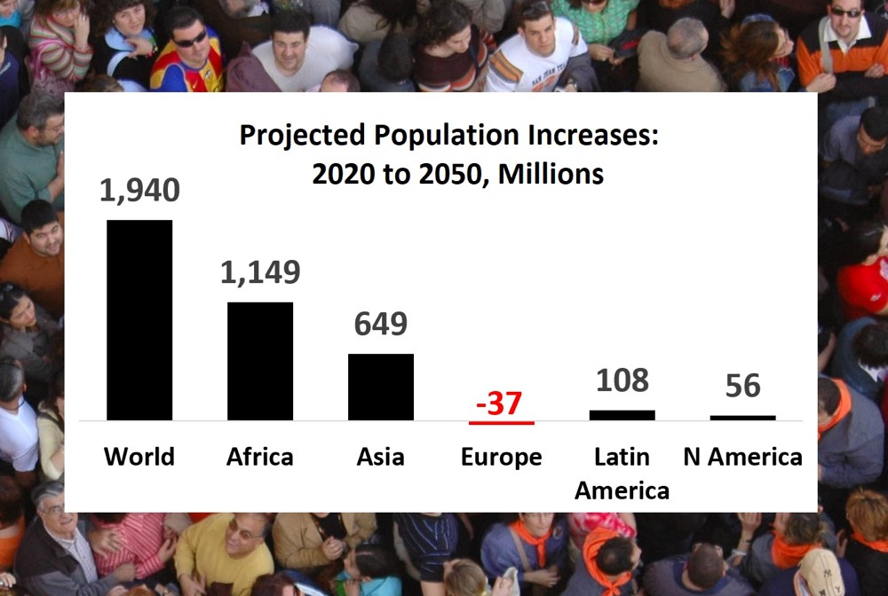 2020 World Population