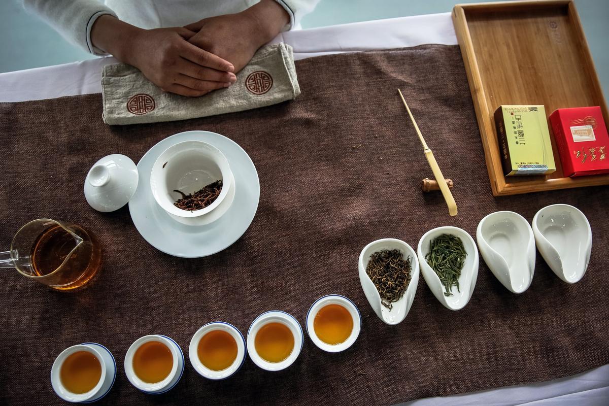 Tea Plantation - 4.jpg