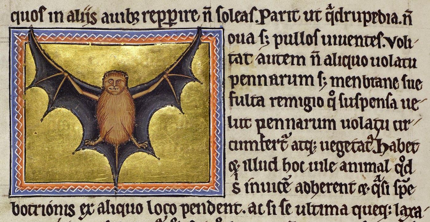 green dragon codex full text pdf