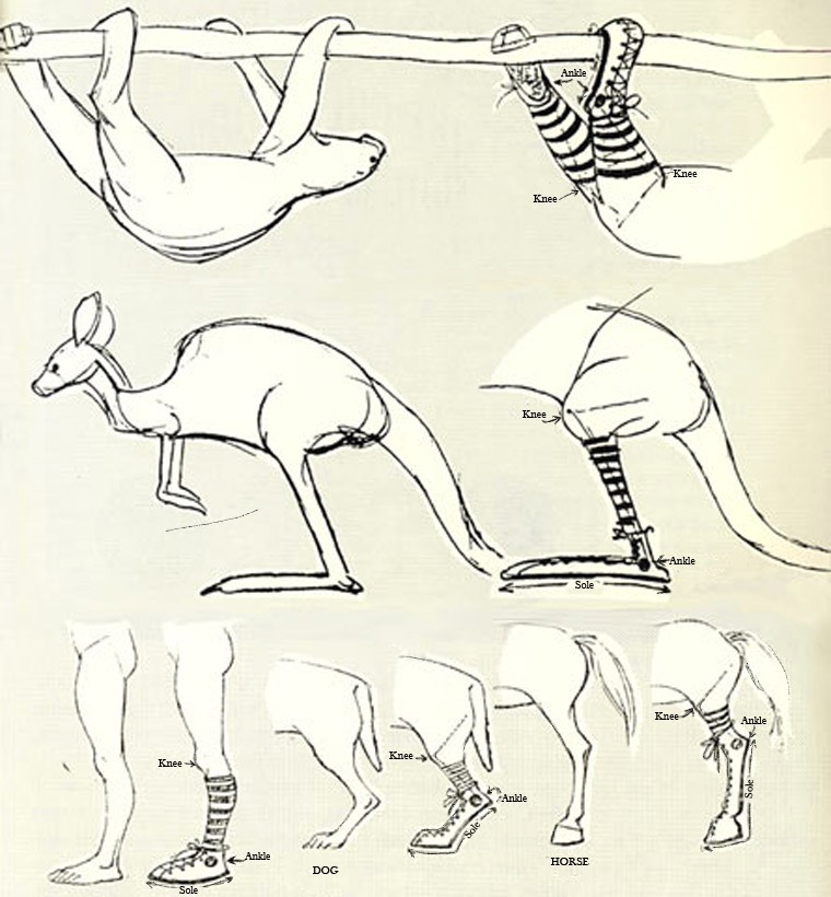 Chuck Jones's Trick for Drawing Animal Legs