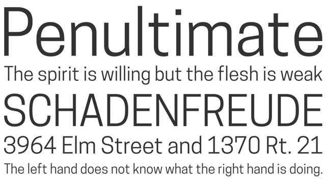 Top new typefaces of 2014