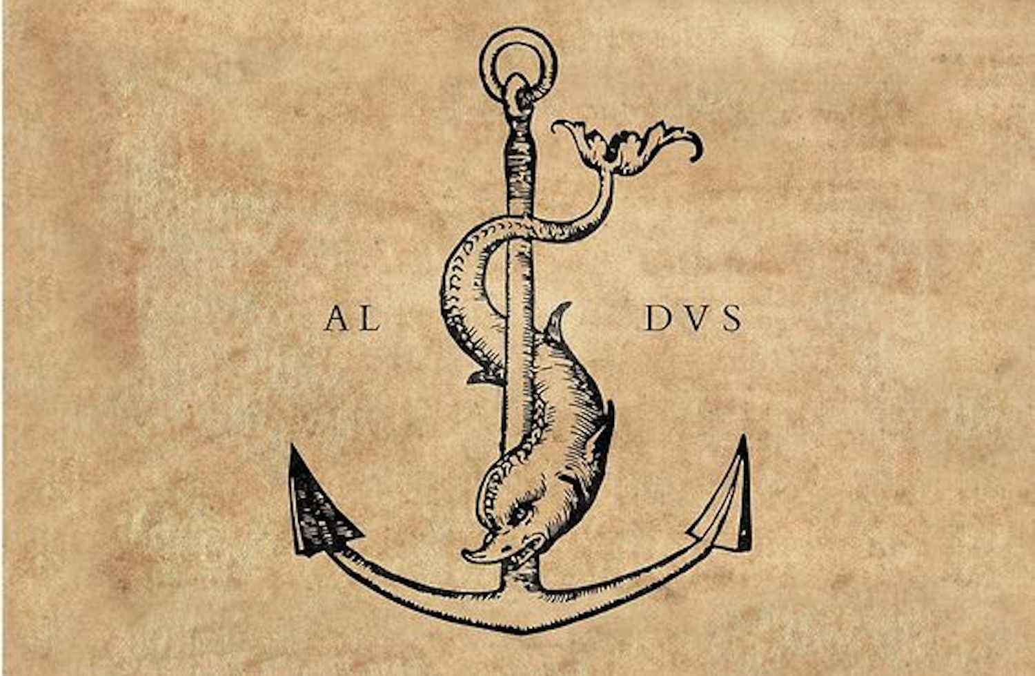 dolphin and anchor.jpg