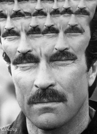Fractal Tom Selleck