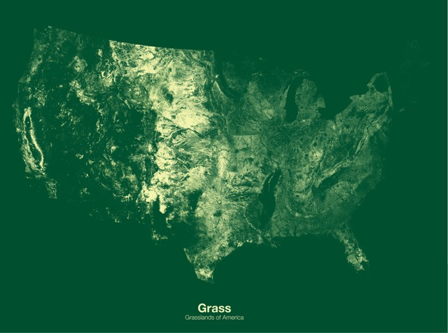 Minimal Maps - Us forest cover map