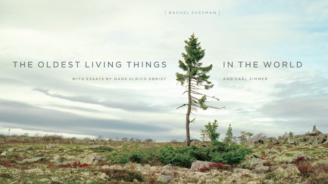 Oldest Living Things Book