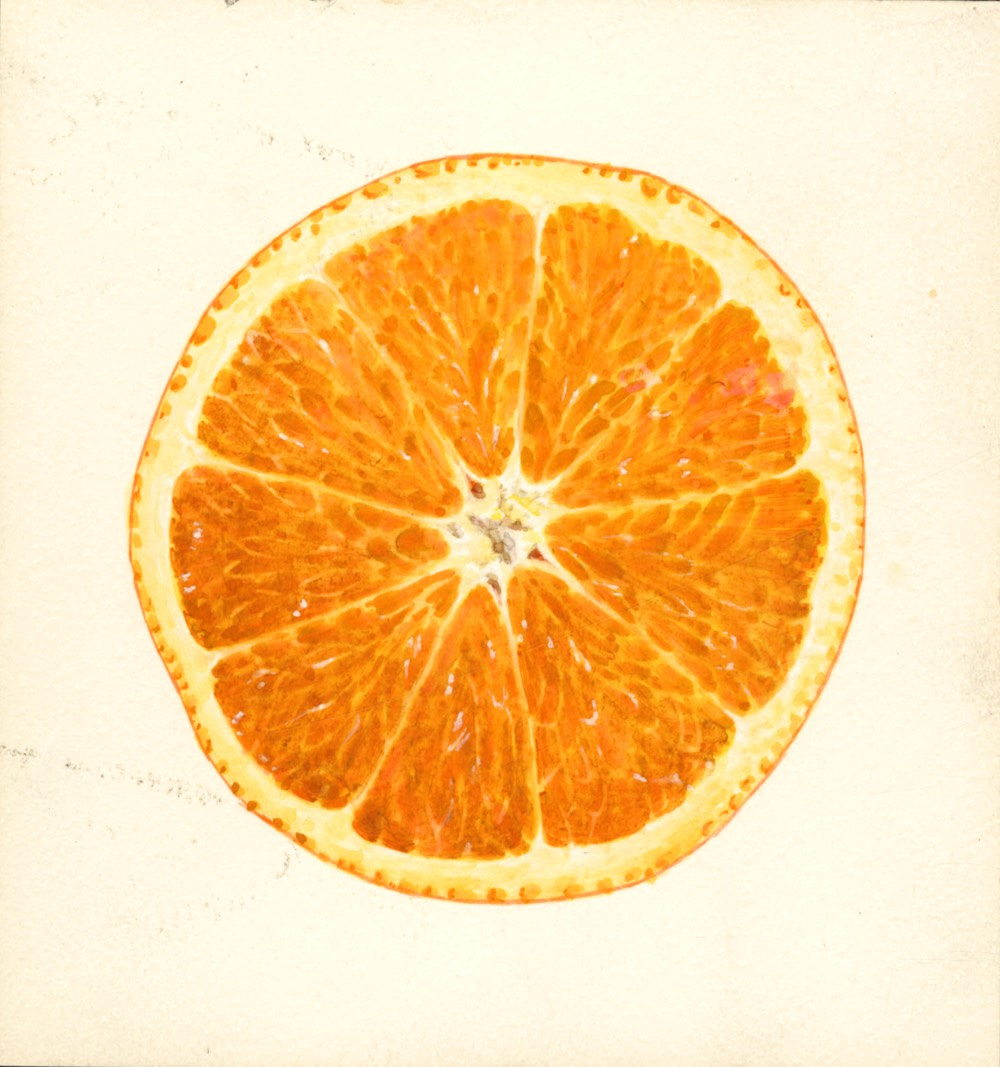 the etymology of orange which came first the color or the fruit