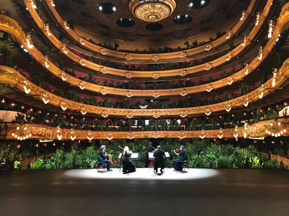 Plants Opera