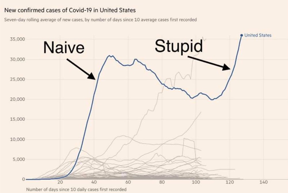 US Covid Stupid Graph