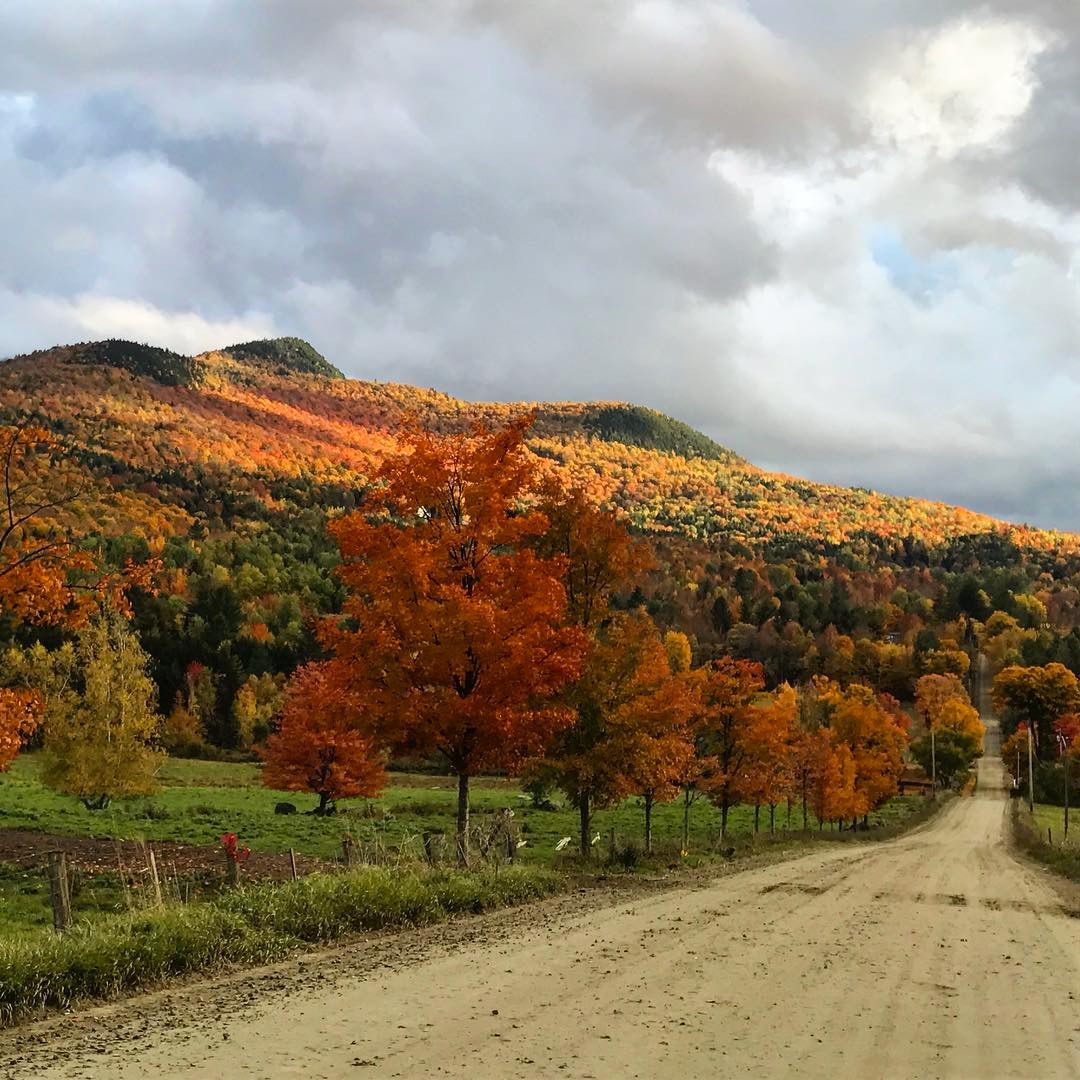 here s my favorite vt foliage s from last year taken half a mile from my house right out of my car window on the way to pick up the kids at school
