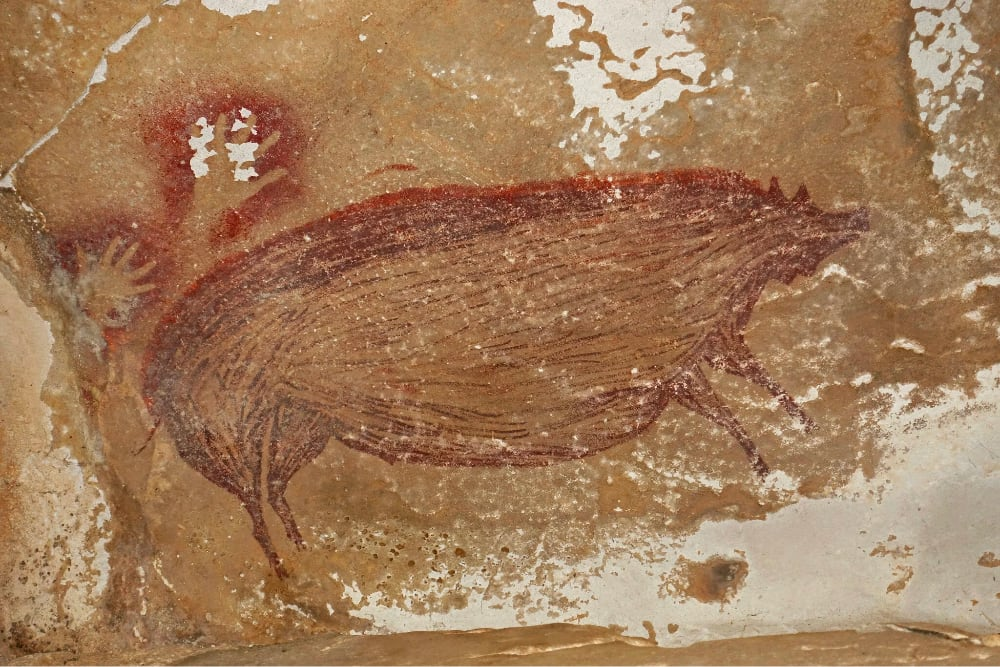 cave painting of a pig